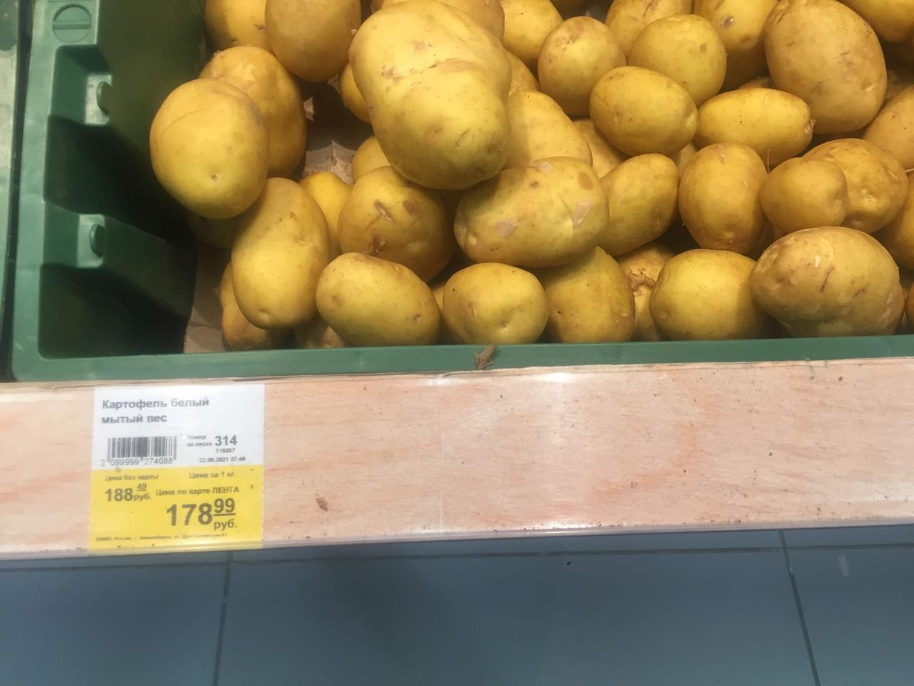Фото «Хотят, чтобы померли с голодухи»: в Новосибирске раскупили дешёвый картофель 5