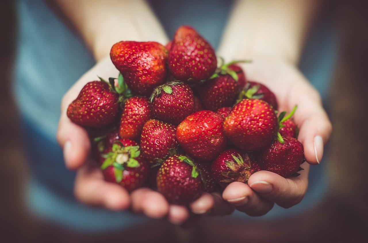 Фото Самые простые и вкусные рецепты варенья из клубники и лесной земляники летом 2021 года 3