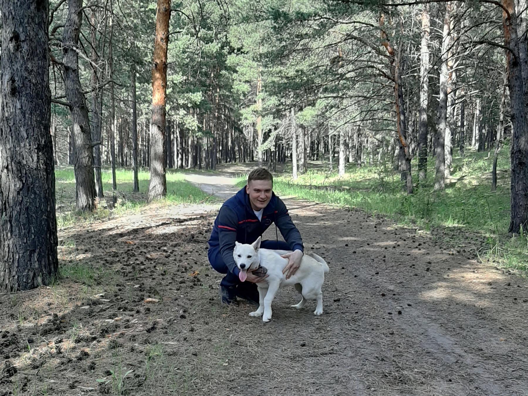 фото Глава Хакасии Коновалов показал подросшего щенка из приюта 2