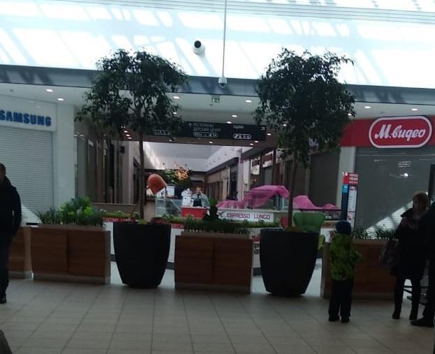 фото Ажиотаж в ТЦ Новосибирска: какие магазины работают, несмотря на запрет властей 2