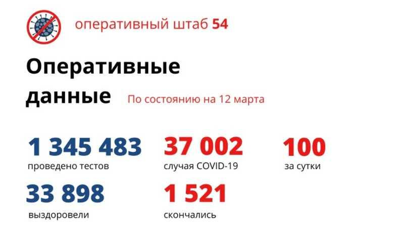 Фото Коронавирус в Новосибирске: количество умерших от COVID-19 к 13 марта 2021 года 2