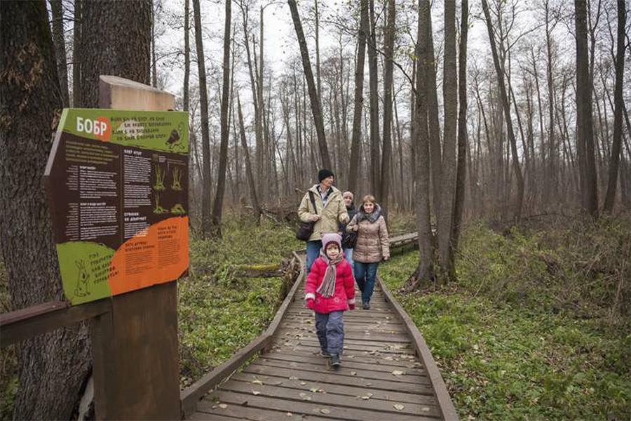 фото Стала известна дата закрытия Заельцовского парка: новосибирцы не смогут гулять по его территории больше года 3