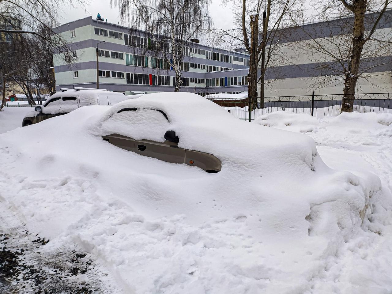 фото Новосибирск завалило снегом в ночь на 30 марта 2021 года 4