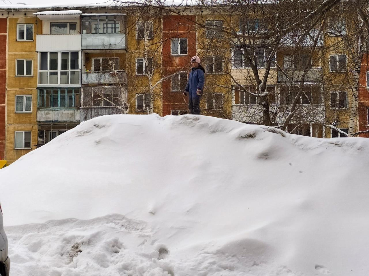 фото Новосибирск завалило снегом в ночь на 30 марта 2021 года 2
