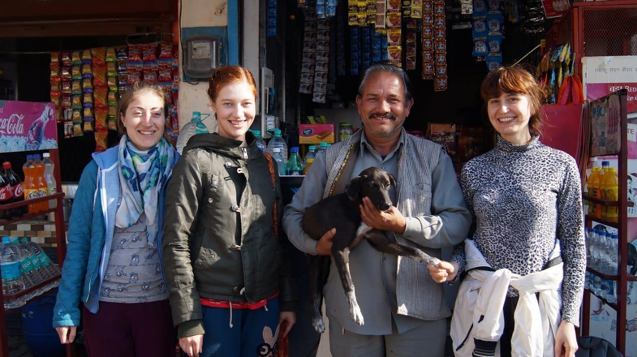 фото «Ад, на который психически здоровый человек не сможет смотреть»: зачем новосибирцы спасают бродячих собак в Абхазии и Индии 7