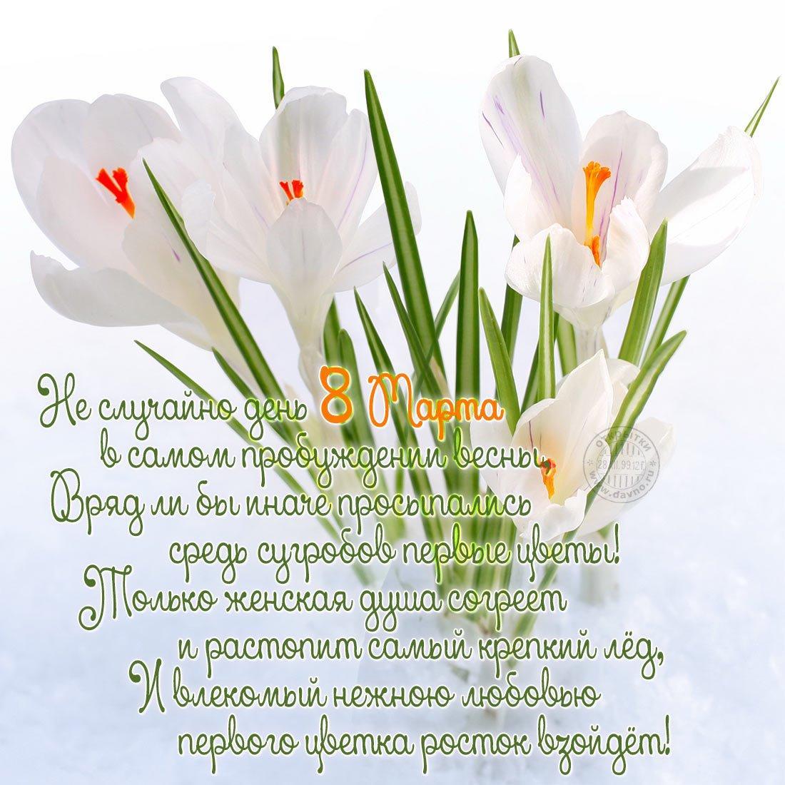 фото Поздравления с 8 Марта: прикольные открытки, стихи и поздравления 13