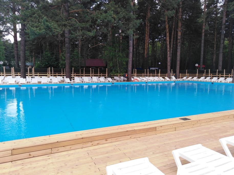 Фото Уличный бассейн с пляжем за 90 миллионов появился на месте порубок в парке Новосибирска 3