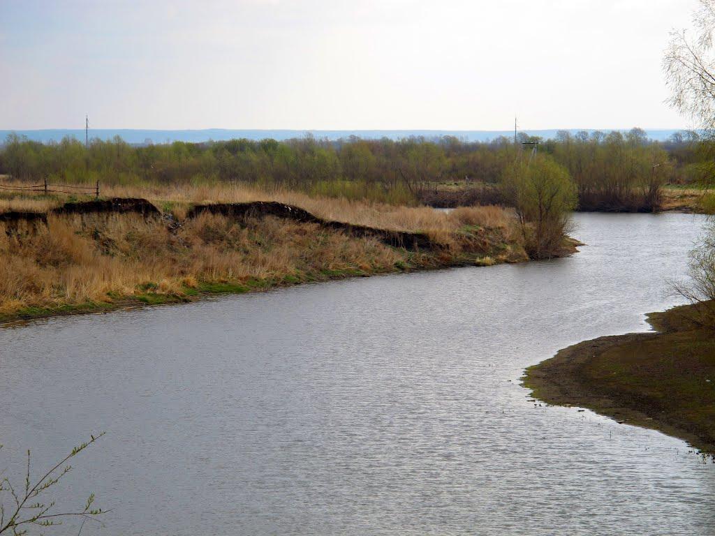 фото Запаниковал и утонул: в Новосибирской области начали проверку по факту смерти подростка 3