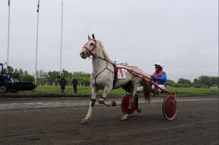 Фото На открытии летнего бегового сезона на Новосибирском ипподроме главным призом стал трактор 2