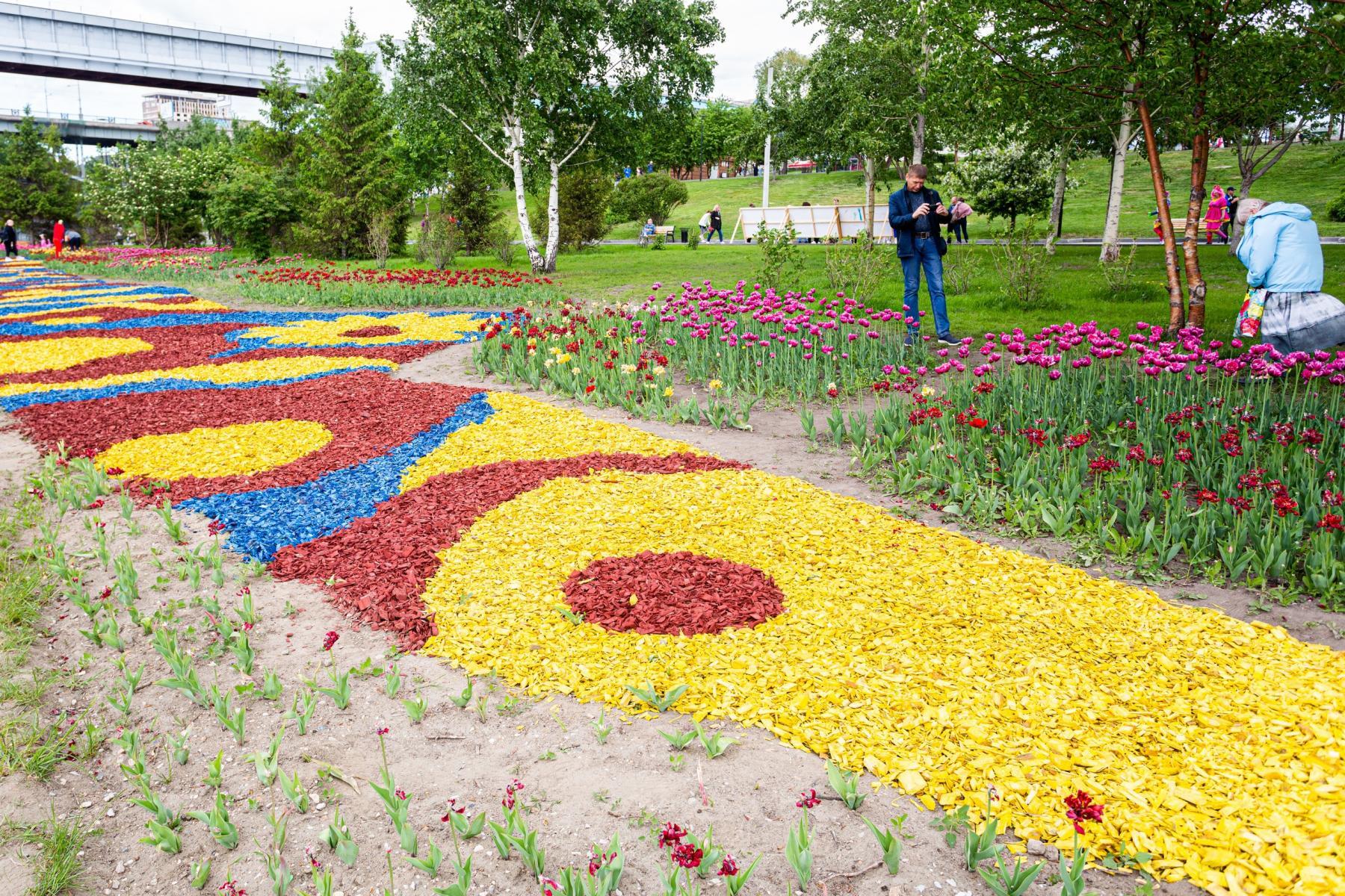 Фото Фестиваль тюльпанов открылся в Новосибирске 29 мая 4