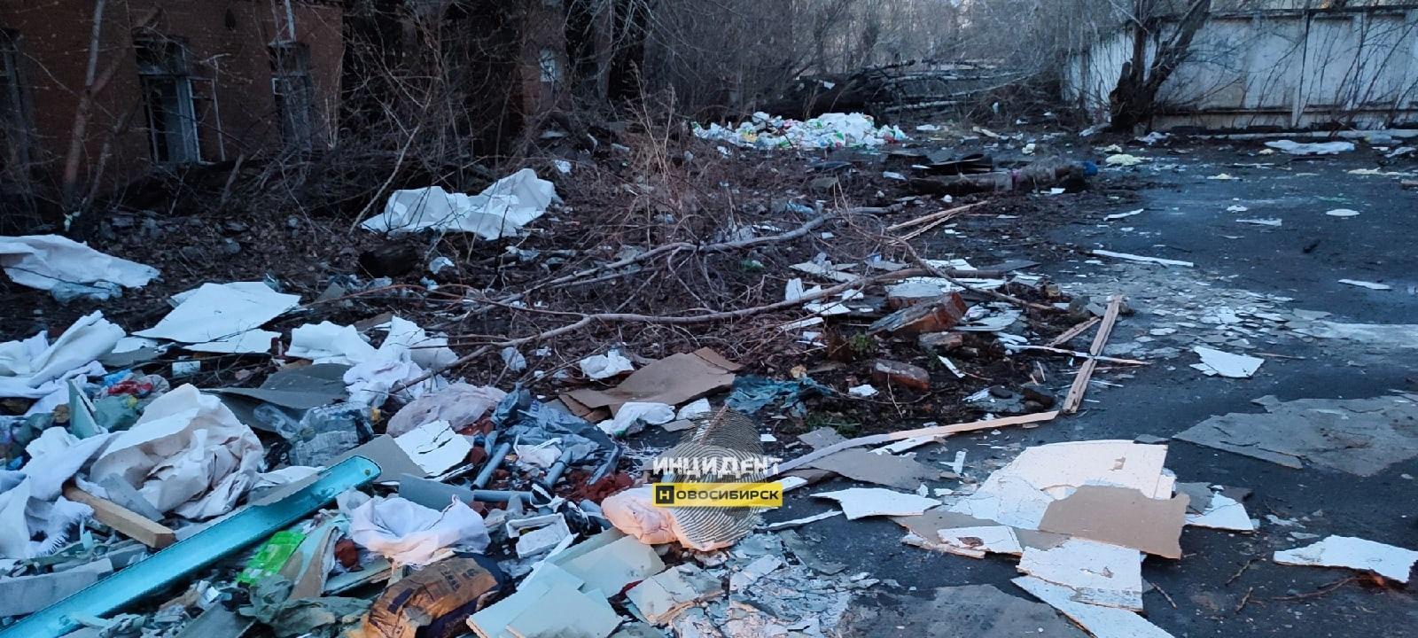 фото Огромную свалку нашли на территории Военного городка в Новосибирске 2