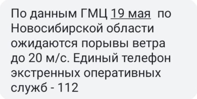 фото МЧС распространило штормовое предупреждение на 19 мая в Новосибирске 2