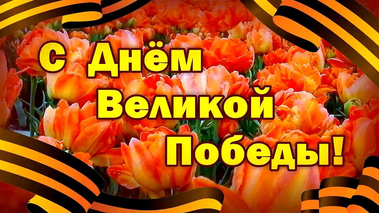 фото День Великой Победы: лучшие открытки и поздравления с 9 Мая 4