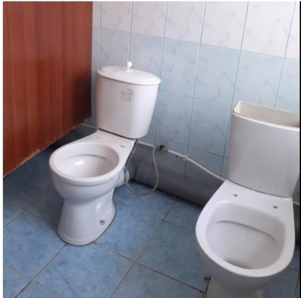 фото В Новосибирской области две школы стали победителями в конкурсе ужасных туалетов 2