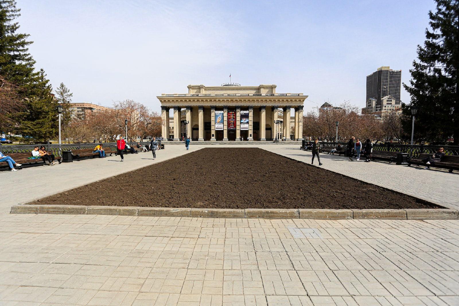 фото Первые бархатцы высадили на площади Ленина в Новосибирске 8