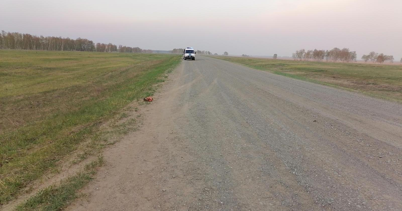 фото «Придётся учиться жить без мамы»: многодетная семья на «девятке» попала в автокатастрофу под Новосибирском 2