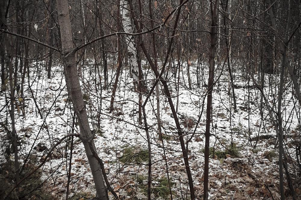 Фото «Мама убьёт»: новосибирский врач-психотерапевт рассказала о причинах детских суицидов 2