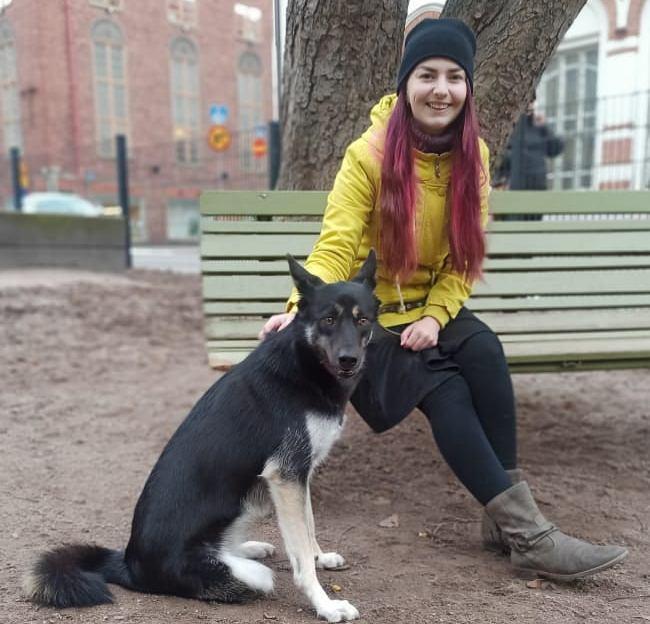 фото «Её история похожа на сказку»: бездомная собака без лапы переехала из Новосибирска в Финляндию 3