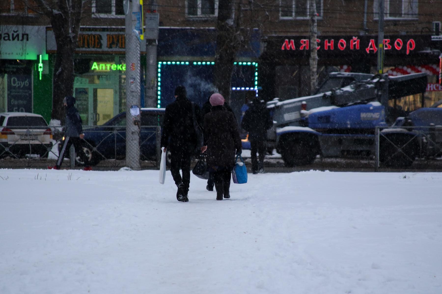 фото Привыкайте к вони: в Новосибирске предложили бороться со снегом при помощи фекалий 5
