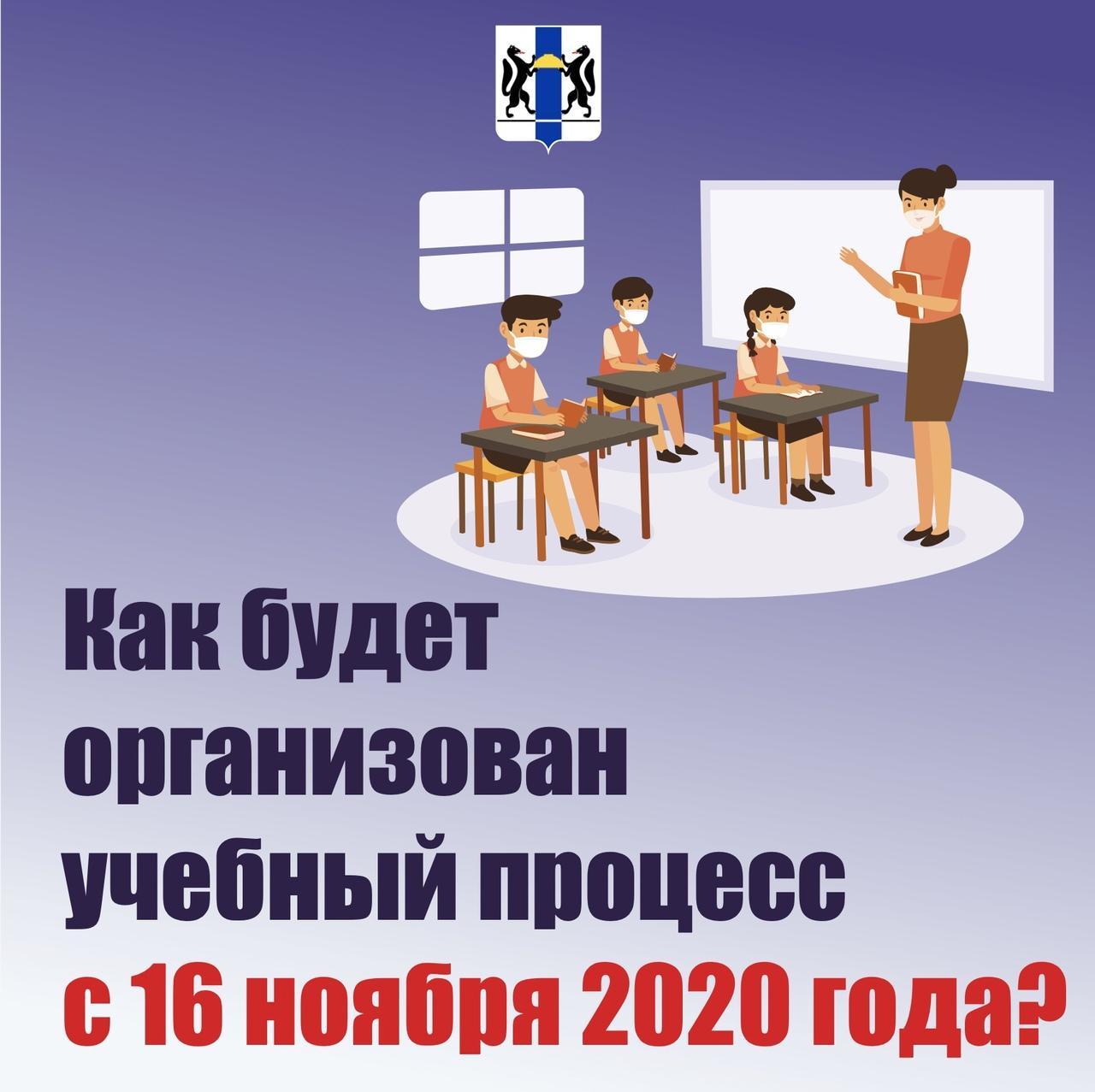 фото Как будут учиться школьники Новосибирска с 16 ноября: показываем в трёх карточках 2