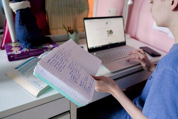 фото «Нарушение режима, отсутствие контакта и «зависающие» платформы»: новосибирские учителя честно рассказали о нюансах и проблемах дистанционного обучения 3
