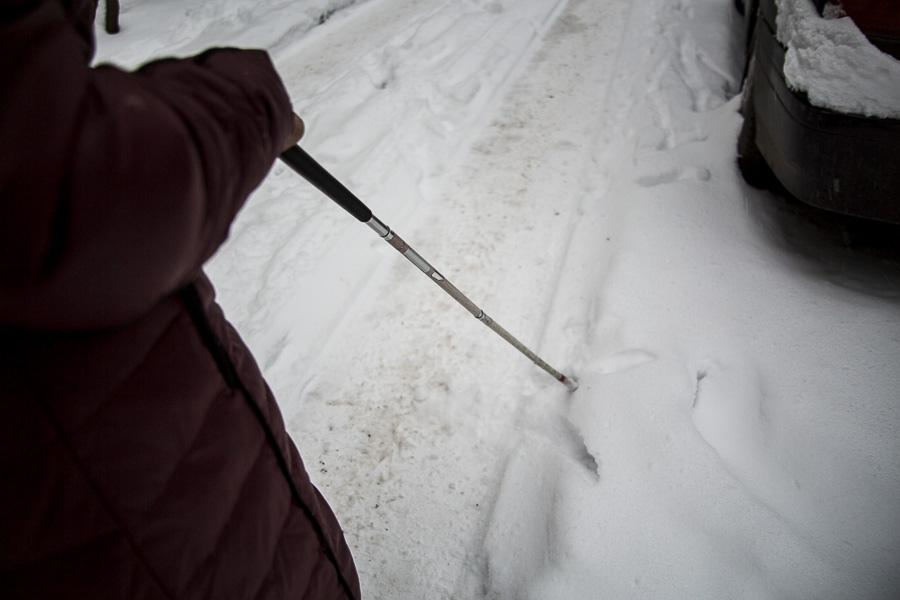 фото «Лучшая помощь – это люди»: как незрячие воюют в Новосибирске с автохамами, кривыми тротуарами и снегом 3
