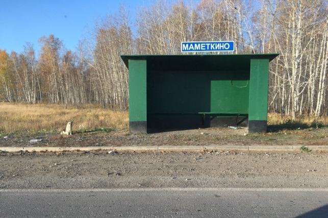 Фото Маметкинский Хатико покинул остановку и обрёл новый дом 2