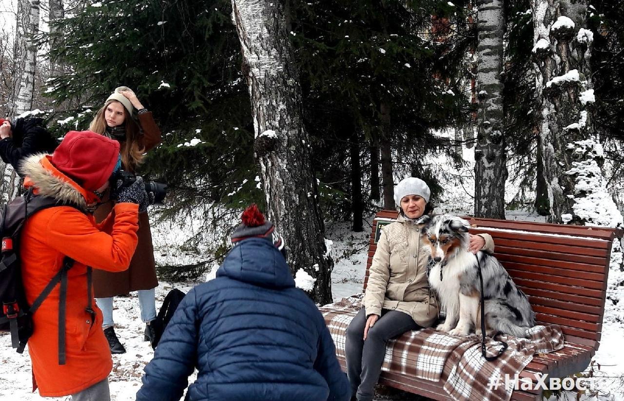 Фото Четыре часа на морозе провели волонтёры Академгородка ради бездомных собак 2