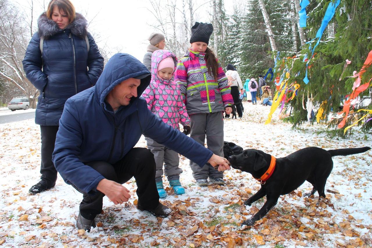 Фото Четыре часа на морозе провели волонтёры Академгородка ради бездомных собак 3