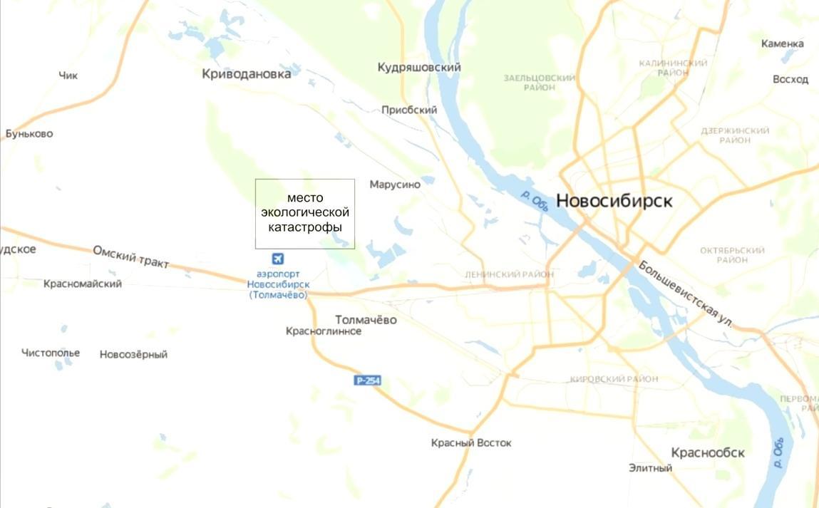 фото «Рыба перестала водиться, исчезли бобры»: отходы аэропорта Толмачёво льются в реку 2