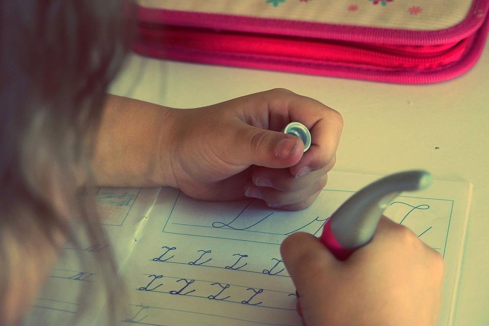 Фото «Ученик разрывается»: родители и педагоги новосибирских школьников поспорили о количестве «домашки» 4