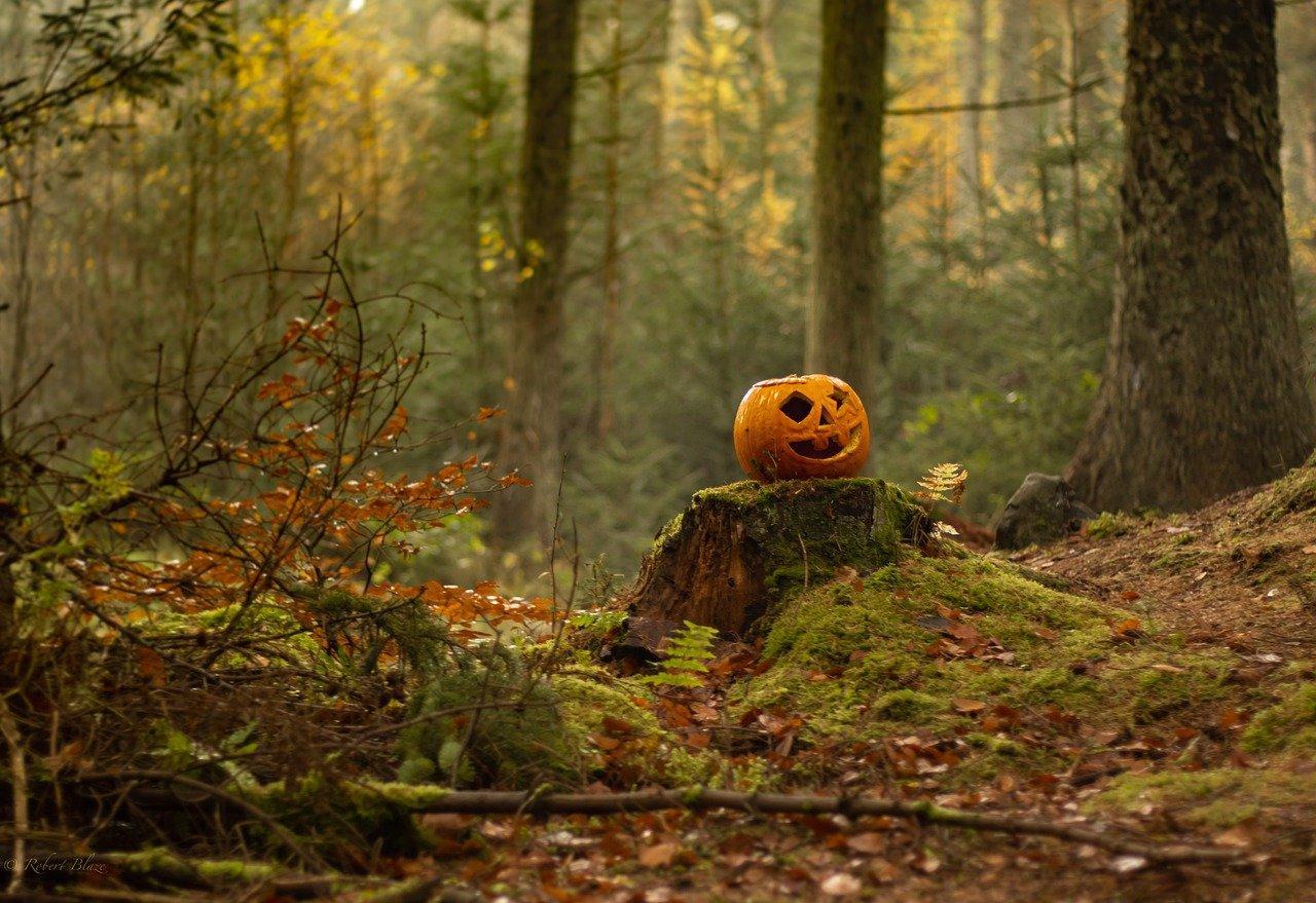 Фото Хеллоуин-2021: какого числа в этом году праздник мертвецов 2