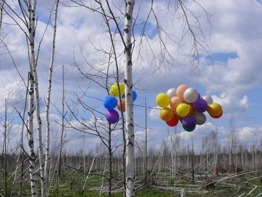 Фото В Новосибирском зоопарке рассказали, почему не стоит отпускать в небо воздушные шары 3