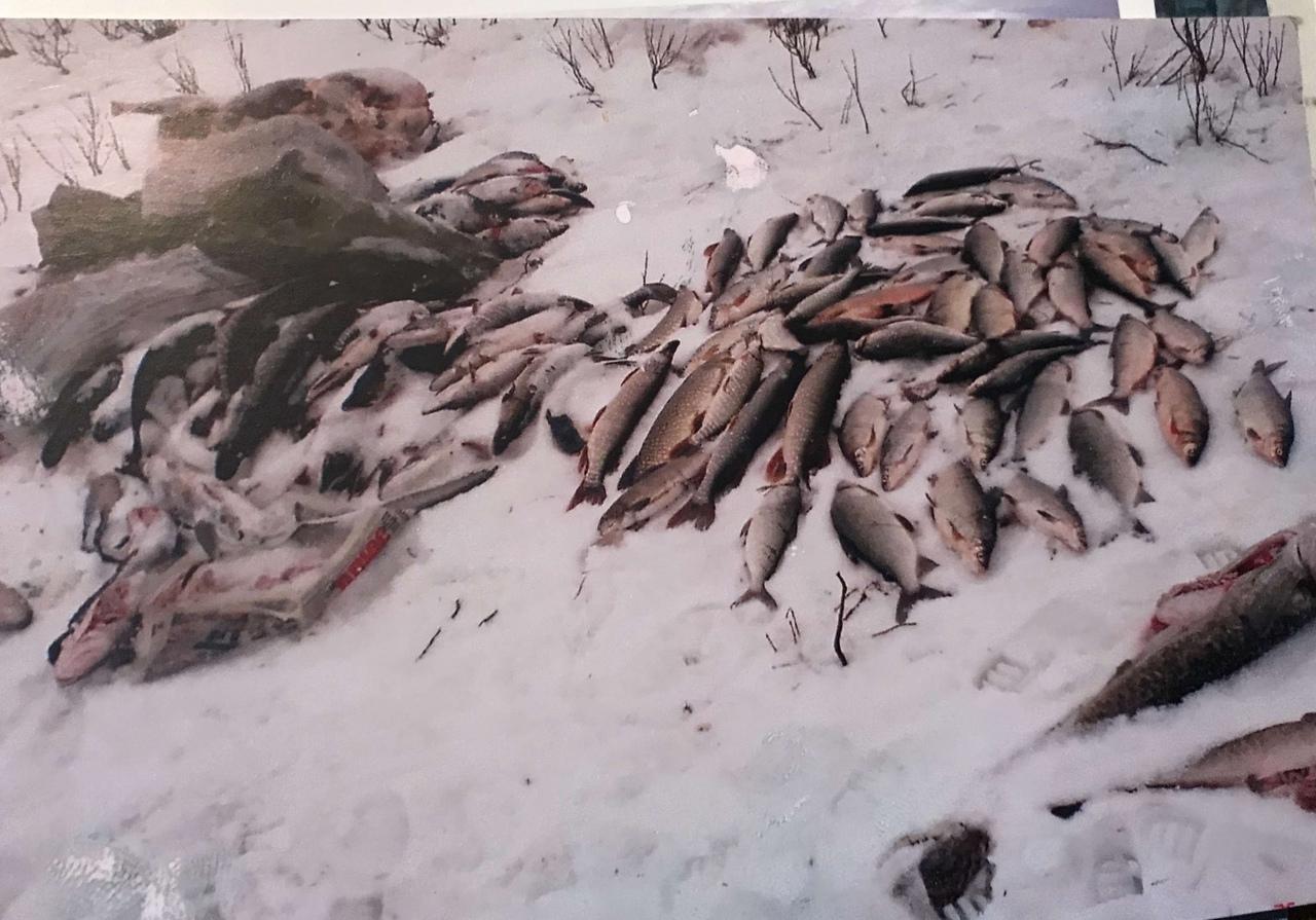 Фото Человек-тундра: 77-летний пенсионер из Томска отправился в дикую глушь, чтобы сжечь охотничью базу погибшего сына 10