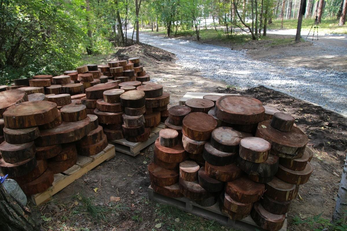 Фото Масштабное обновление Заельцовского парка планируют завершить раньше срока 3