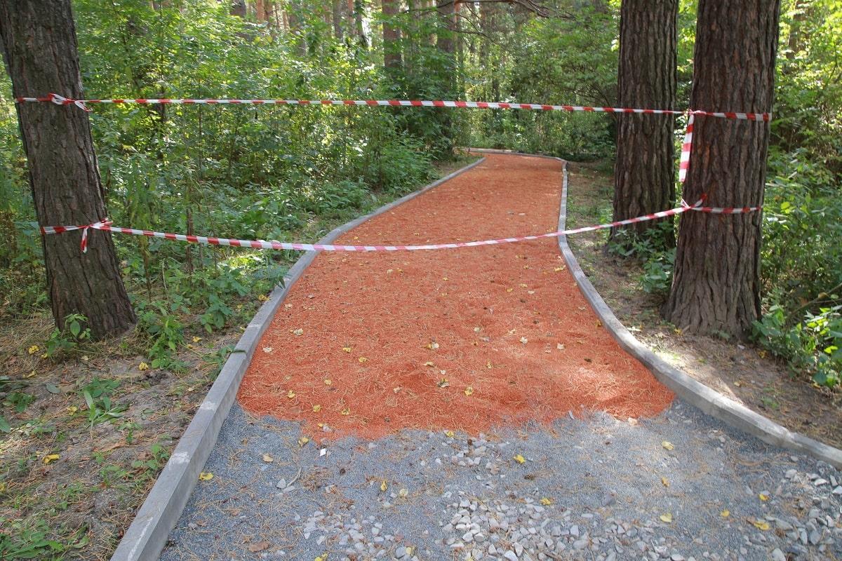 Фото Масштабное обновление Заельцовского парка планируют завершить раньше срока 2