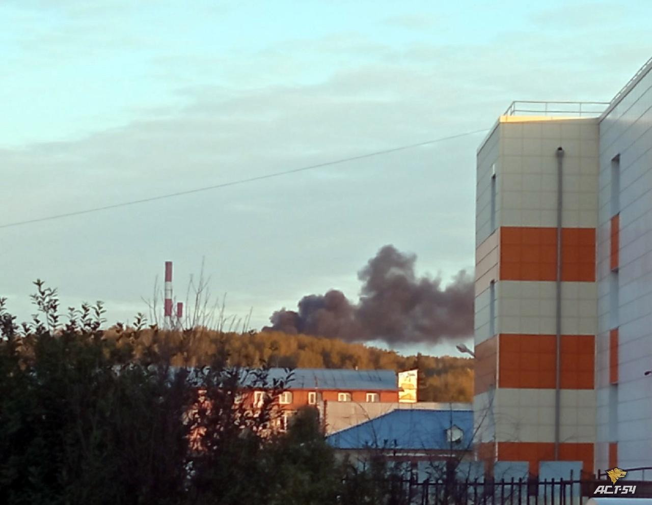 Фото Под Новосибирском загорелся коттедж 2