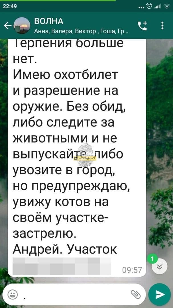 Фото «Нужно следить за своими шерстяными!»: новосибирцы вступились за дачника-живодёра, застрелившего соседского кота 2