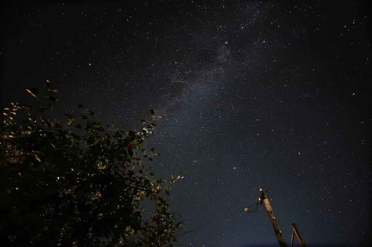 Фото «Нереальное» звёздное небо над Новосибирском запечатлел фотограф Николай Баянов 4