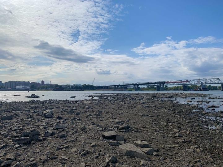 Фото «Утки уже на островке сидят»: рыбаки в Новосибирске напуганы резким падением уровня воды в Оби 2